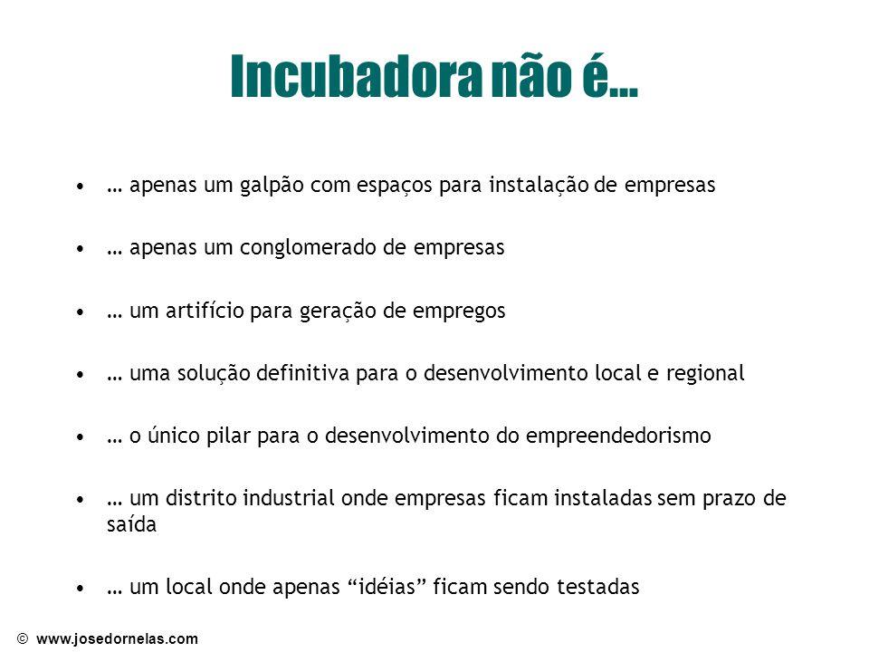 Incubadora não é… … apenas um galpão com espaços para instalação de empresas. … apenas um conglomerado de empresas.