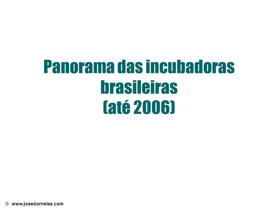 Panorama das incubadoras brasileiras (até 2006)
