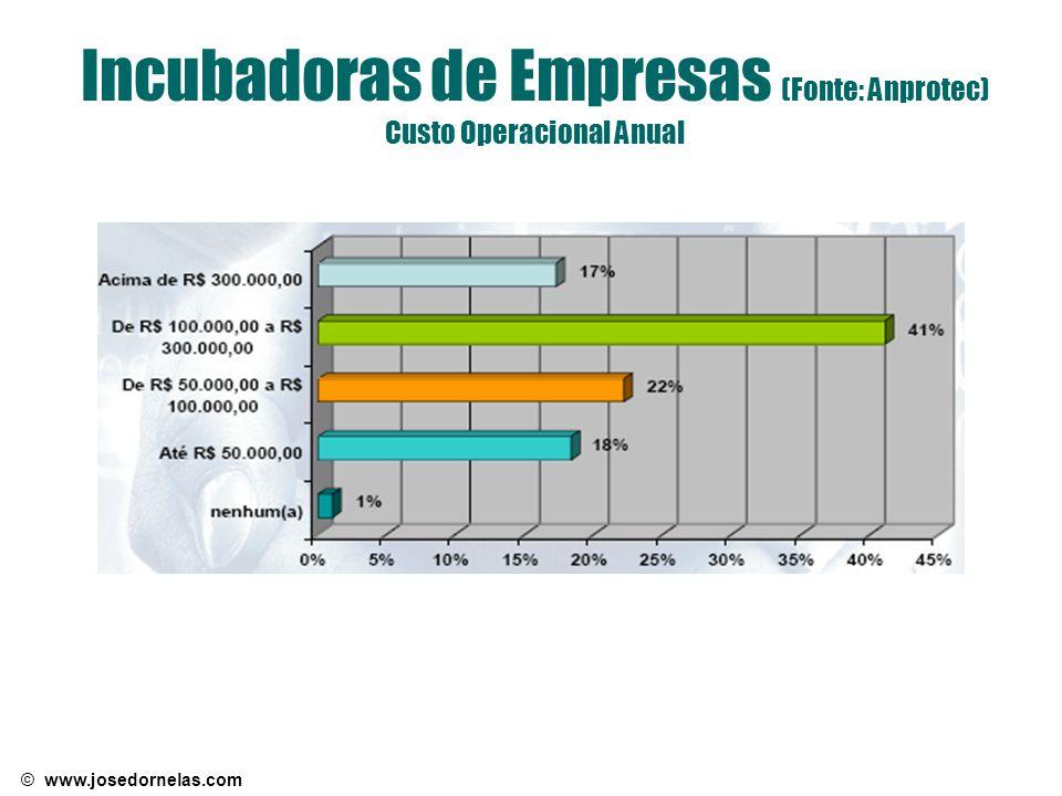Incubadoras de Empresas (Fonte: Anprotec) Custo Operacional Anual
