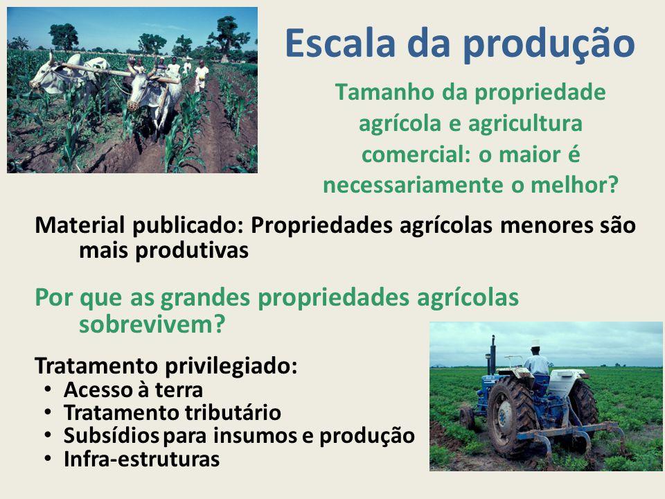 Escala da produção Tamanho da propriedade agrícola e agricultura comercial: o maior é necessariamente o melhor