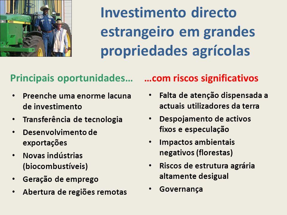 Investimento directo estrangeiro em grandes propriedades agrícolas