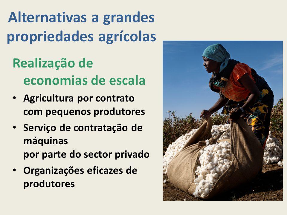 Alternativas a grandes propriedades agrícolas
