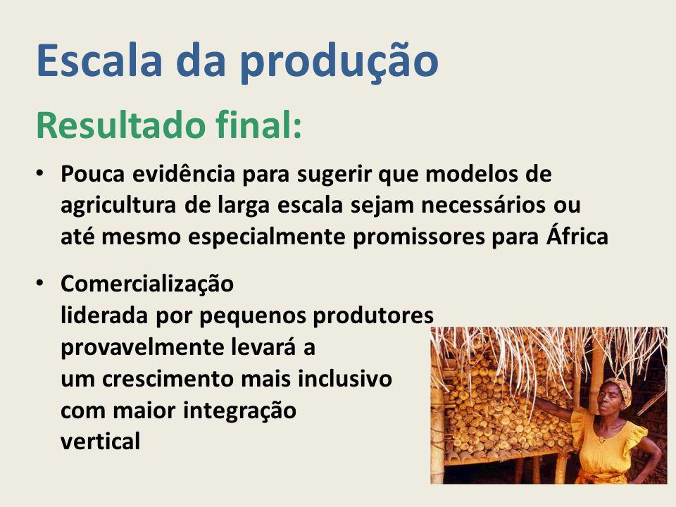 Escala da produção Resultado final: