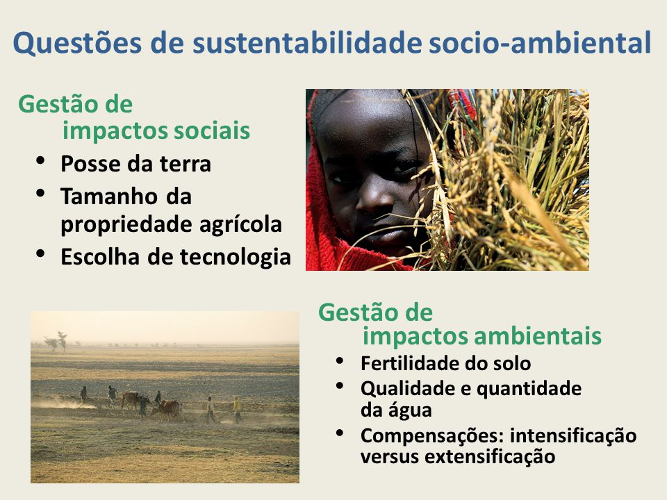 Questões de sustentabilidade socio-ambiental