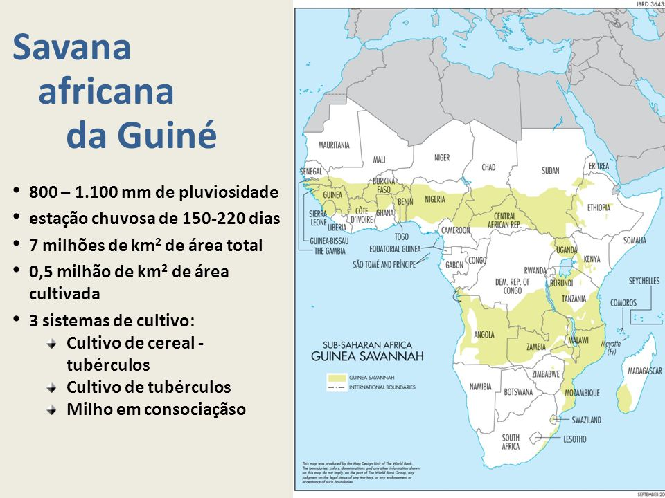 Savana africana da Guiné