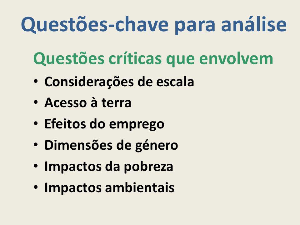 Questões-chave para análise