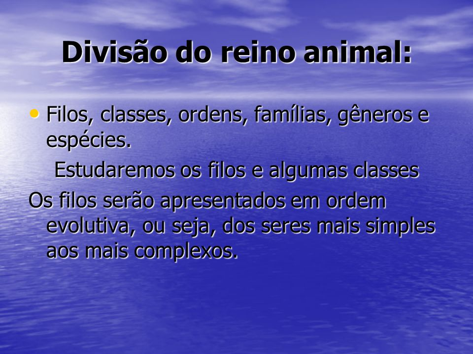Divisão do reino animal:
