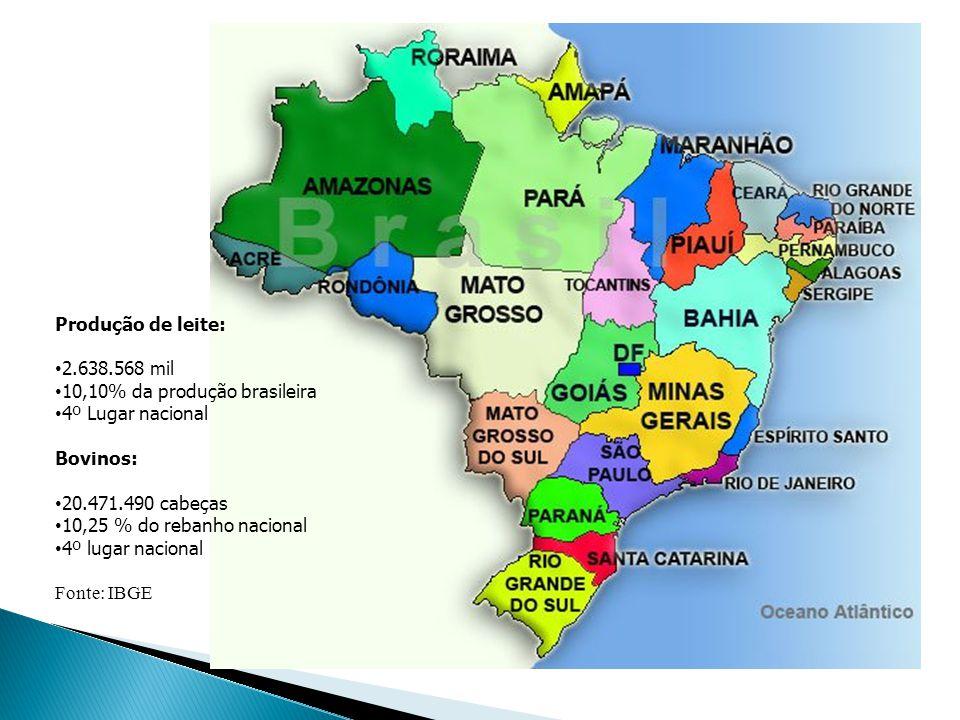 Produção de leite: 2.638.568 mil. 10,10% da produção brasileira. 4º Lugar nacional. Bovinos: 20.471.490 cabeças.