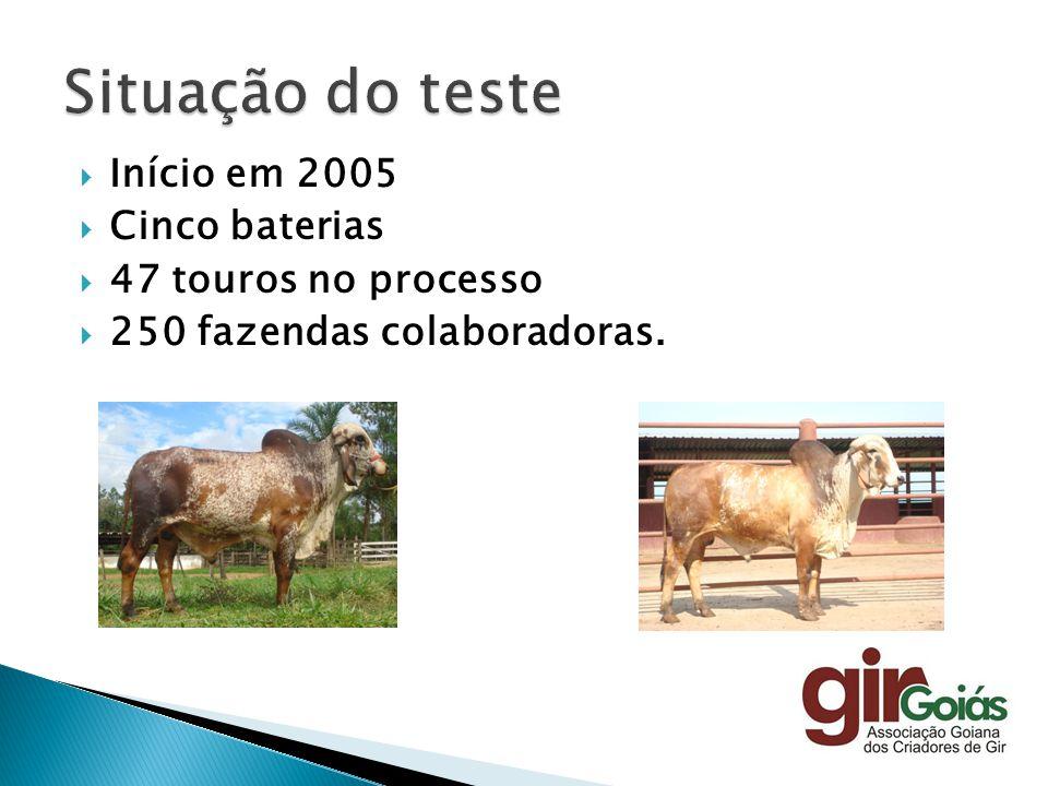 Situação do teste Início em 2005 Cinco baterias 47 touros no processo