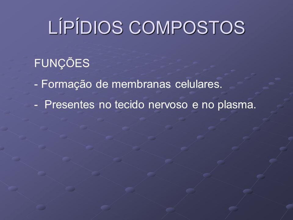 LÍPÍDIOS COMPOSTOS FUNÇÕES Formação de membranas celulares.