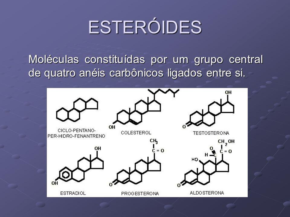 ESTERÓIDES Moléculas constituídas por um grupo central de quatro anéis carbônicos ligados entre si.