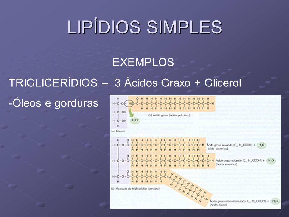 LIPÍDIOS SIMPLES EXEMPLOS TRIGLICERÍDIOS – 3 Ácidos Graxo + Glicerol