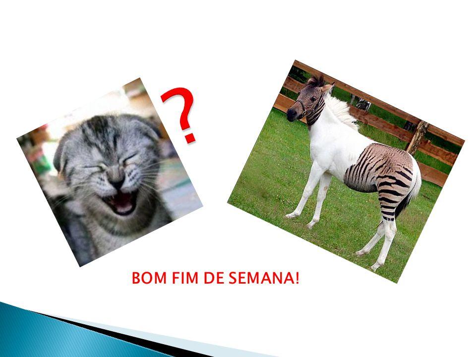 BOM FIM DE SEMANA!