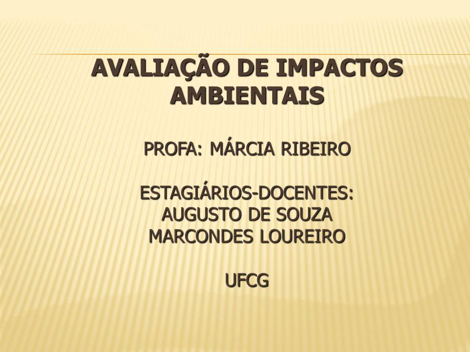 AVALIAÇÃO DE IMPACTOS AMBIENTAIS Profa: Márcia Ribeiro Estagiários-docentes: Augusto de Souza Marcondes Loureiro UFCG