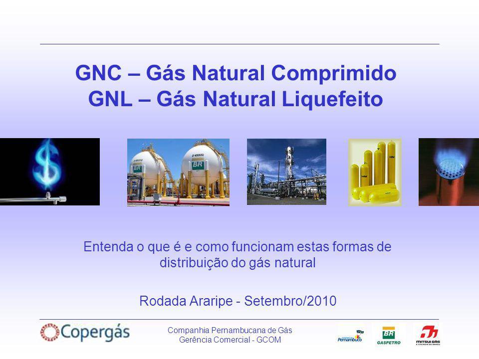 GNC – Gás Natural Comprimido GNL – Gás Natural Liquefeito
