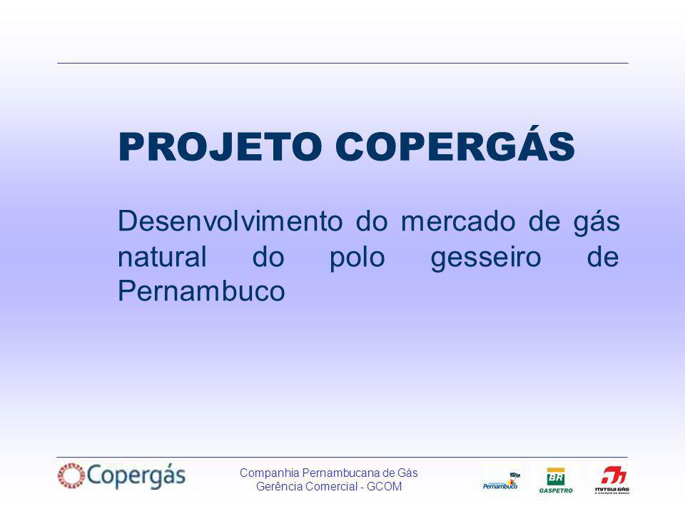 PROJETO COPERGÁS Desenvolvimento do mercado de gás natural do polo gesseiro de Pernambuco