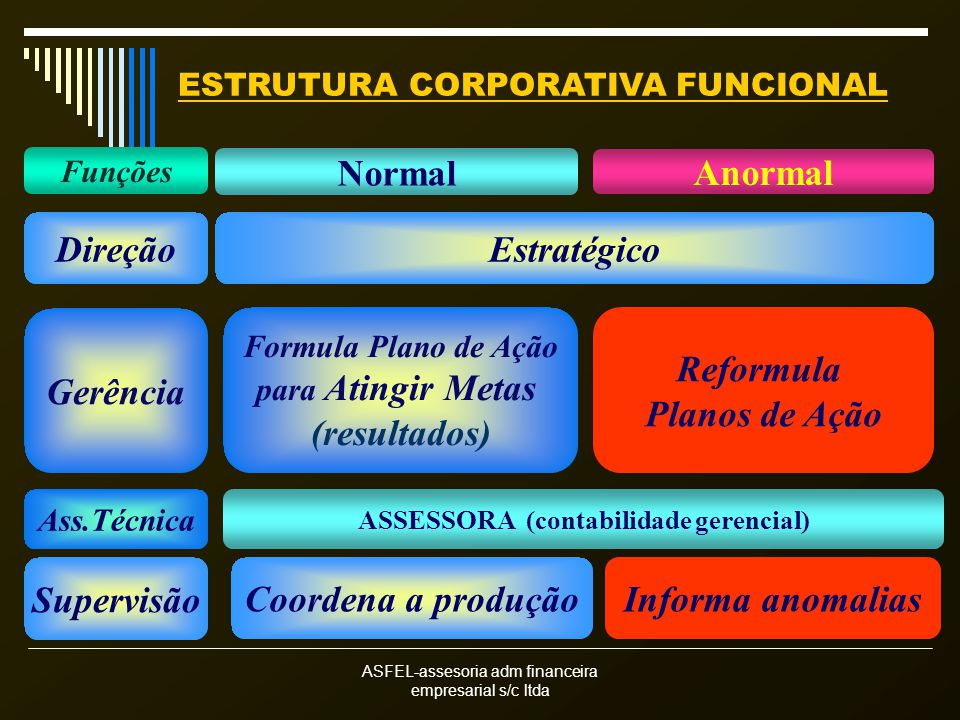 ESTRUTURA CORPORATIVA FUNCIONAL ASSESSORA (contabilidade gerencial)