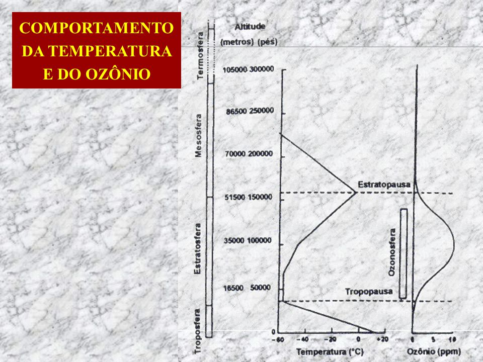 COMPORTAMENTO DA TEMPERATURA E DO OZÔNIO