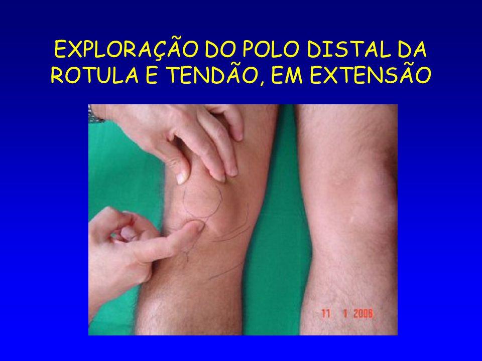 EXPLORAÇÃO DO POLO DISTAL DA ROTULA E TENDÃO, EM EXTENSÃO