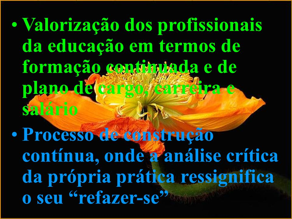 Valorização dos profissionais da educação em termos de formação continuada e de plano de cargo, carreira e salário