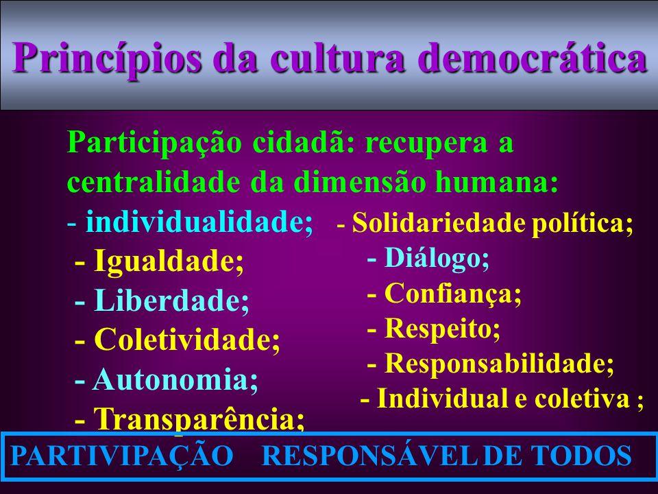Princípios da cultura democrática
