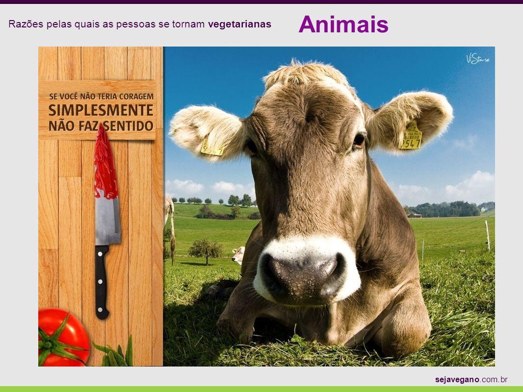 Razões pelas quais as pessoas se tornam vegetarianas