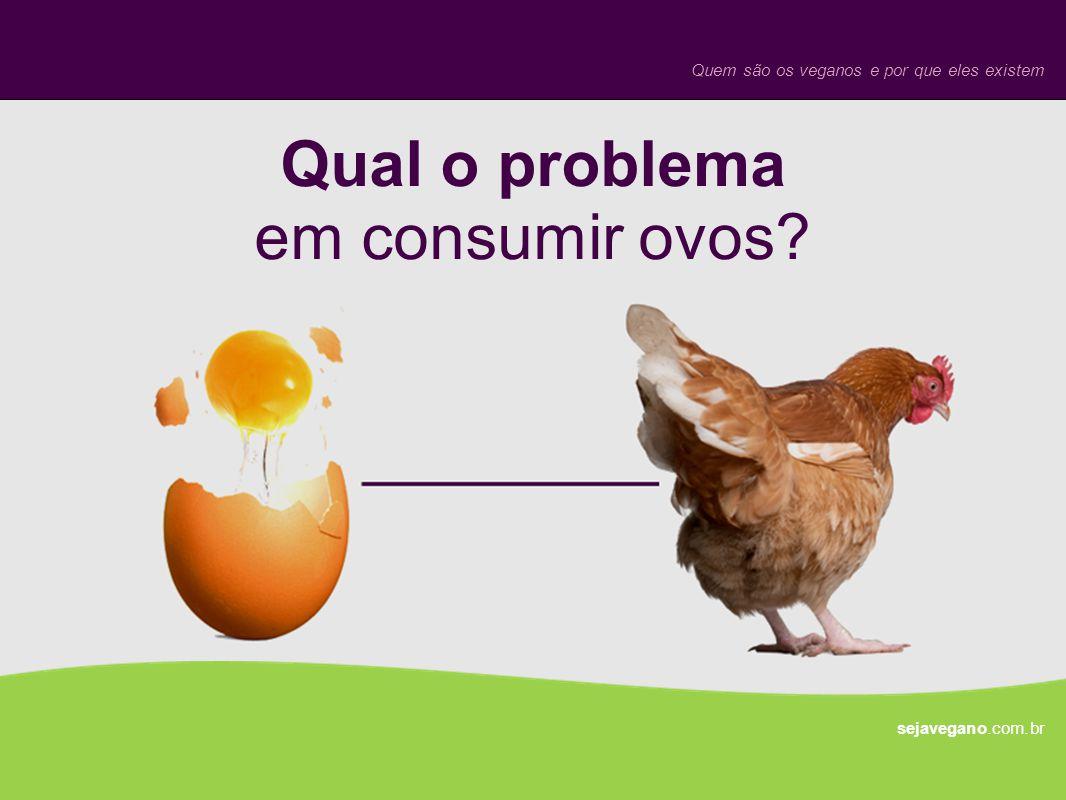 Qual o problema em consumir ovos