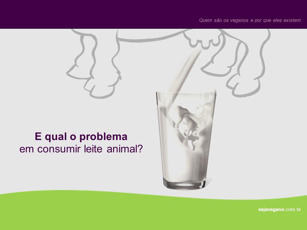 E qual o problema em consumir leite animal