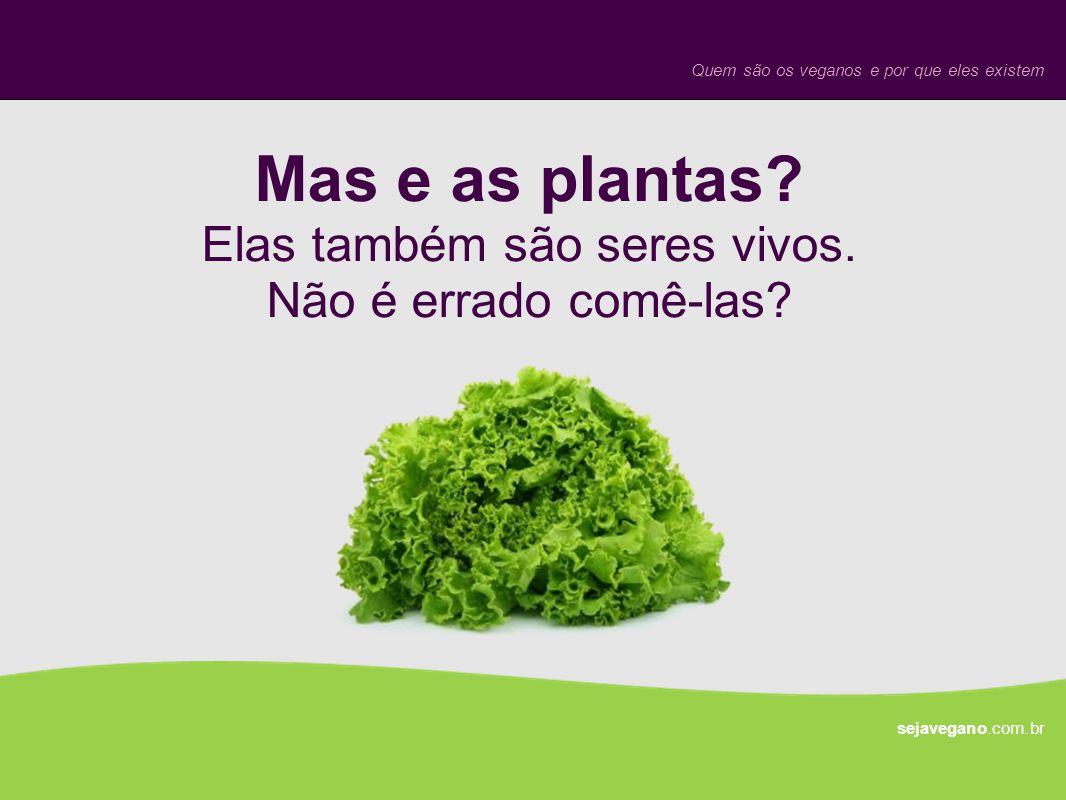 Mas e as plantas Elas também são seres vivos. Não é errado comê-las