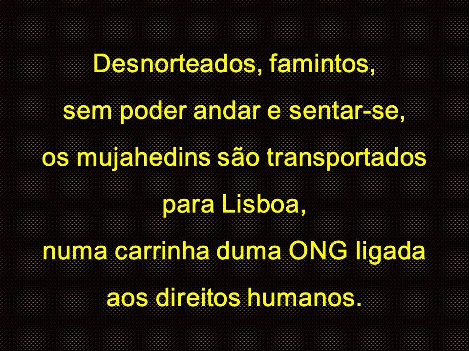 Desnorteados, famintos, sem poder andar e sentar-se, os mujahedins são transportados para Lisboa, numa carrinha duma ONG ligada aos direitos humanos.