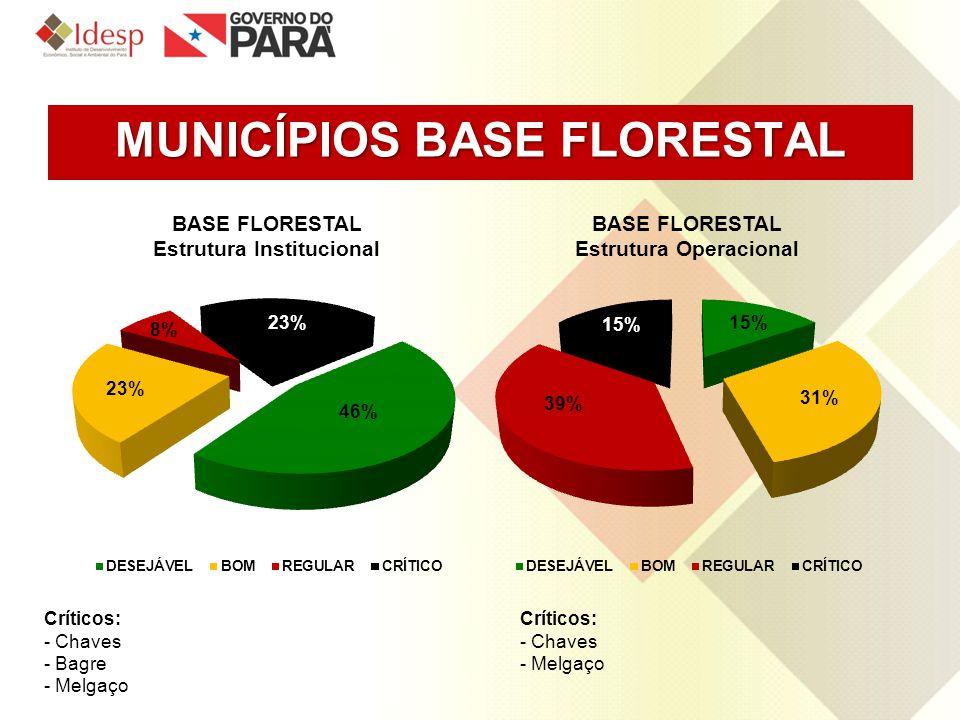 MUNICÍPIOS BASE FLORESTAL