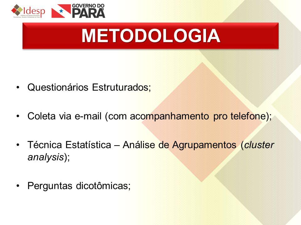 METODOLOGIA Questionários Estruturados;