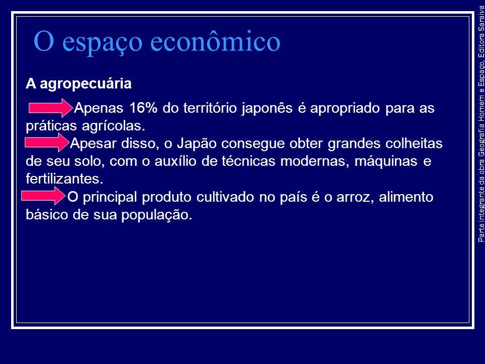 O espaço econômico A agropecuária
