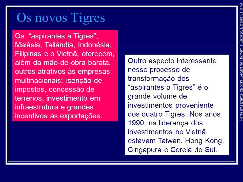 Os novos Tigres