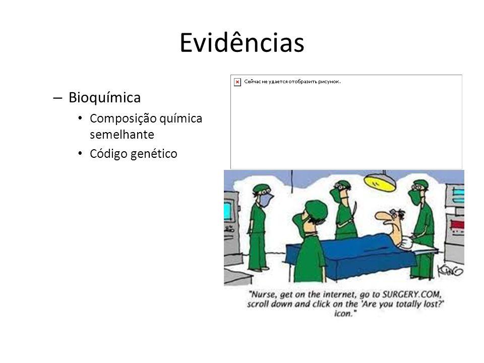 Evidências Bioquímica Composição química semelhante Código genético