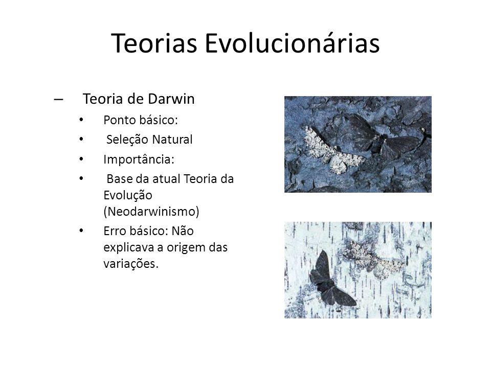 Teorias Evolucionárias