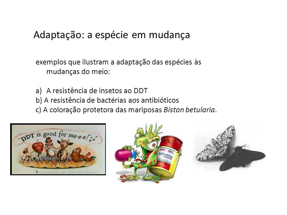 Adaptação: a espécie em mudança