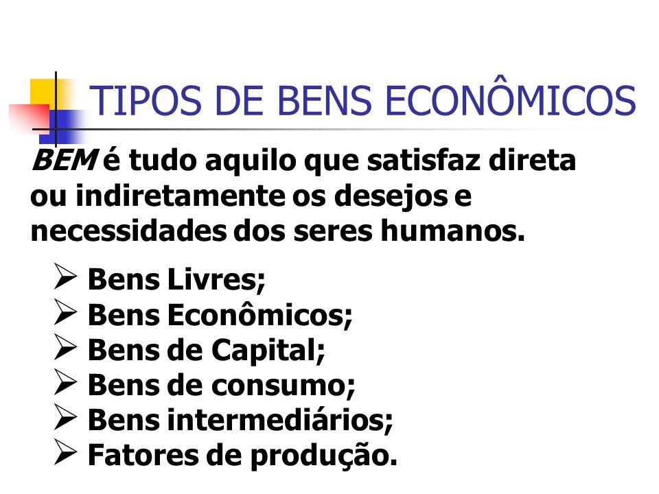 TIPOS DE BENS ECONÔMICOS