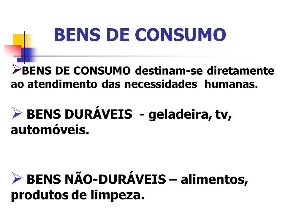 BENS DE CONSUMO BENS DURÁVEIS - geladeira, tv, automóveis.