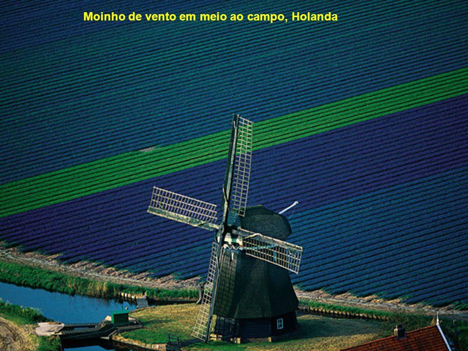 Moinho de vento em meio ao campo, Holanda