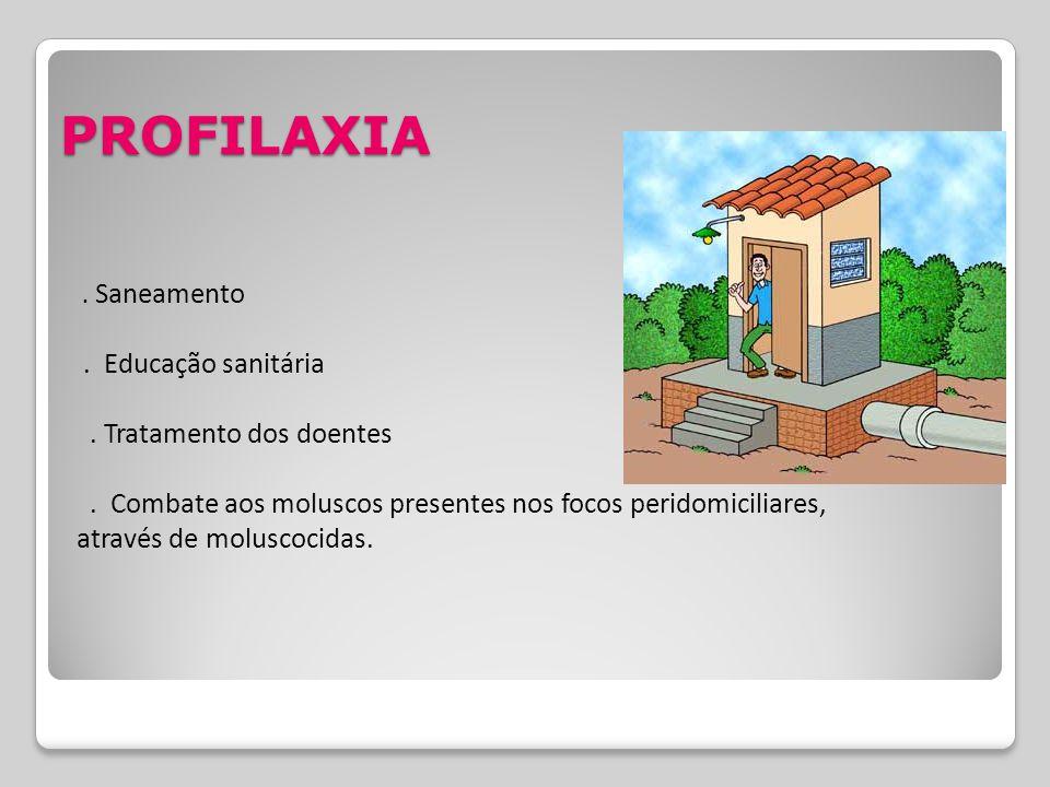 PROFILAXIA . Educação sanitária . Tratamento dos doentes