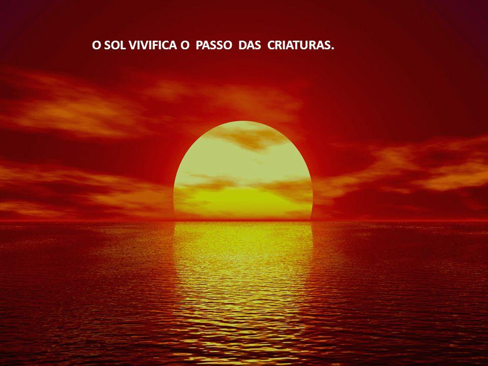 O SOL VIVIFICA O PASSO DAS CRIATURAS.