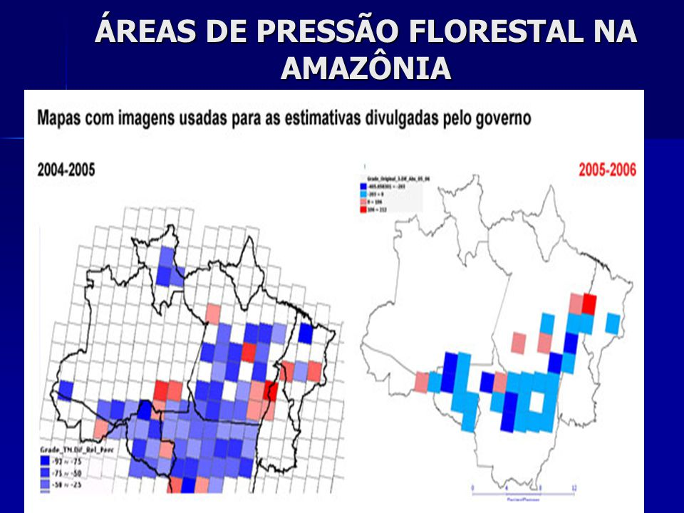 ÁREAS DE PRESSÃO FLORESTAL NA AMAZÔNIA