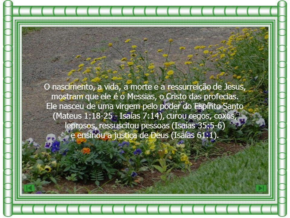 O nascimento, a vida, a morte e a ressurreição de Jesus,