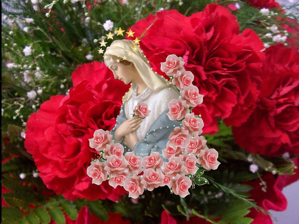 Em seu cântico, Maria louva e agradece o Senhor e Salvador que volta o olhar para a pequenez daquela serva e concebe na sua própria pessoa as promessas feitas a Abraão e à sua descendência.
