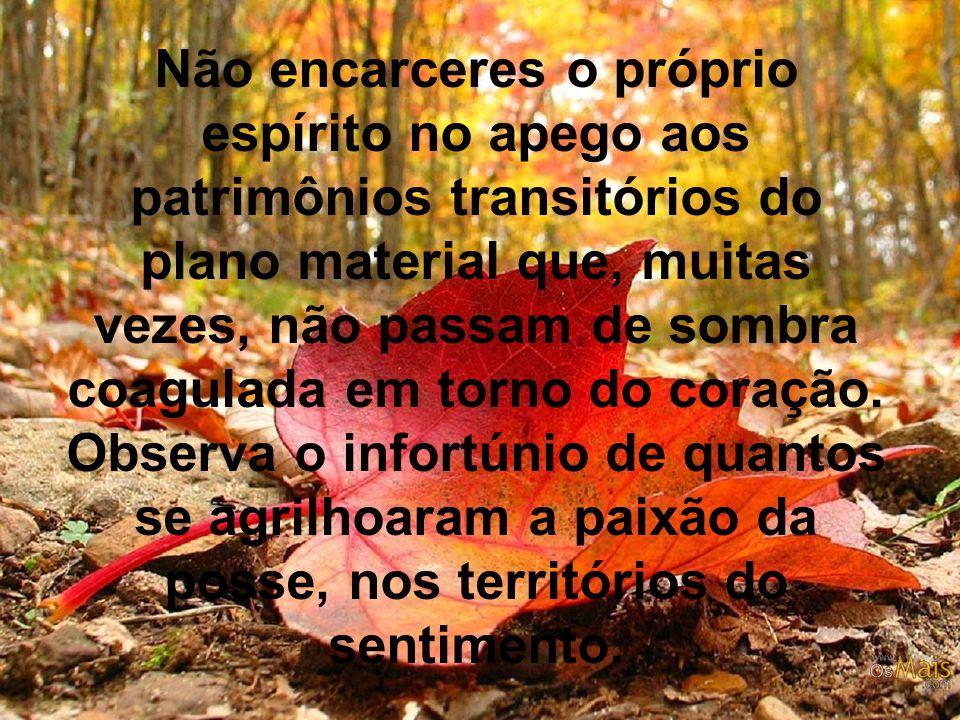 Não encarceres o próprio espírito no apego aos patrimônios transitórios do plano material que, muitas vezes, não passam de sombra coagulada em torno do coração.