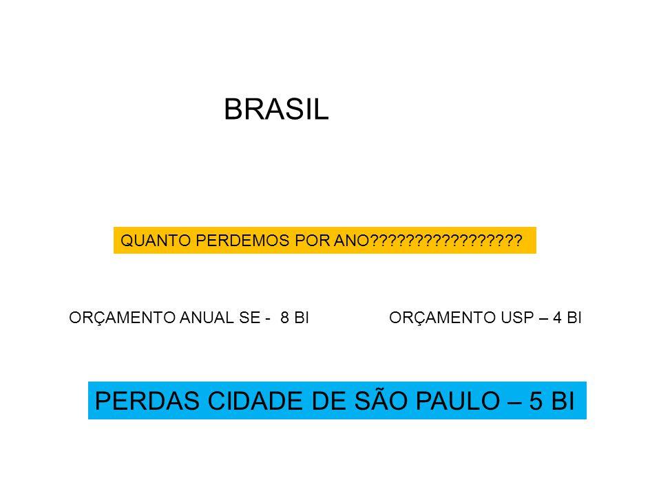 BRASIL PERDAS CIDADE DE SÃO PAULO – 5 BI
