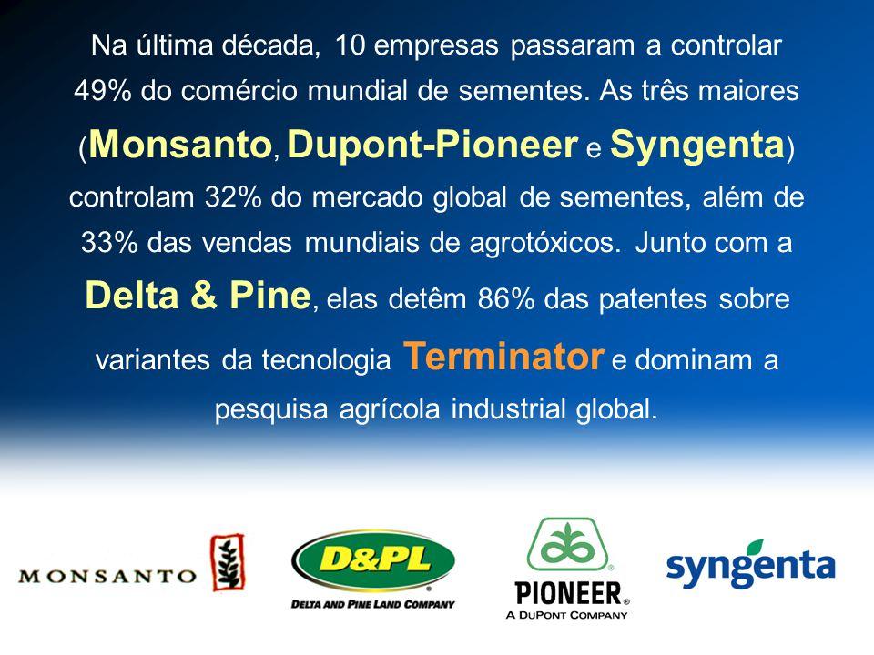 Na última década, 10 empresas passaram a controlar 49% do comércio mundial de sementes.