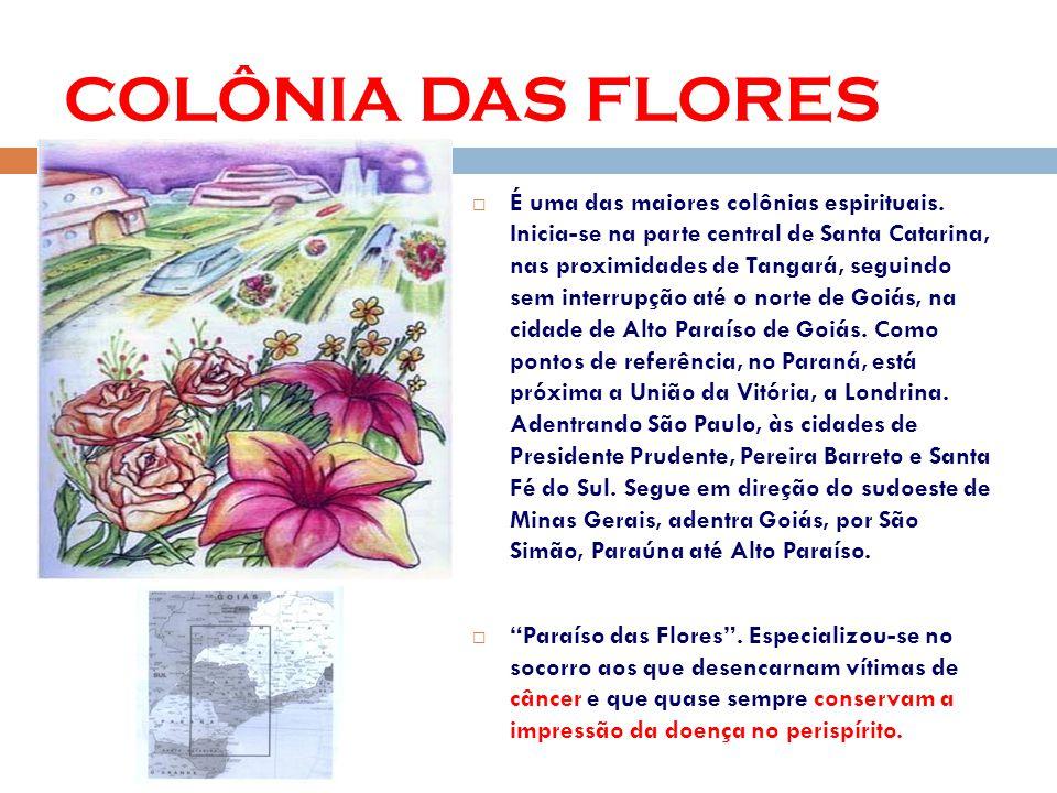 COLÔNIA DAS FLORES