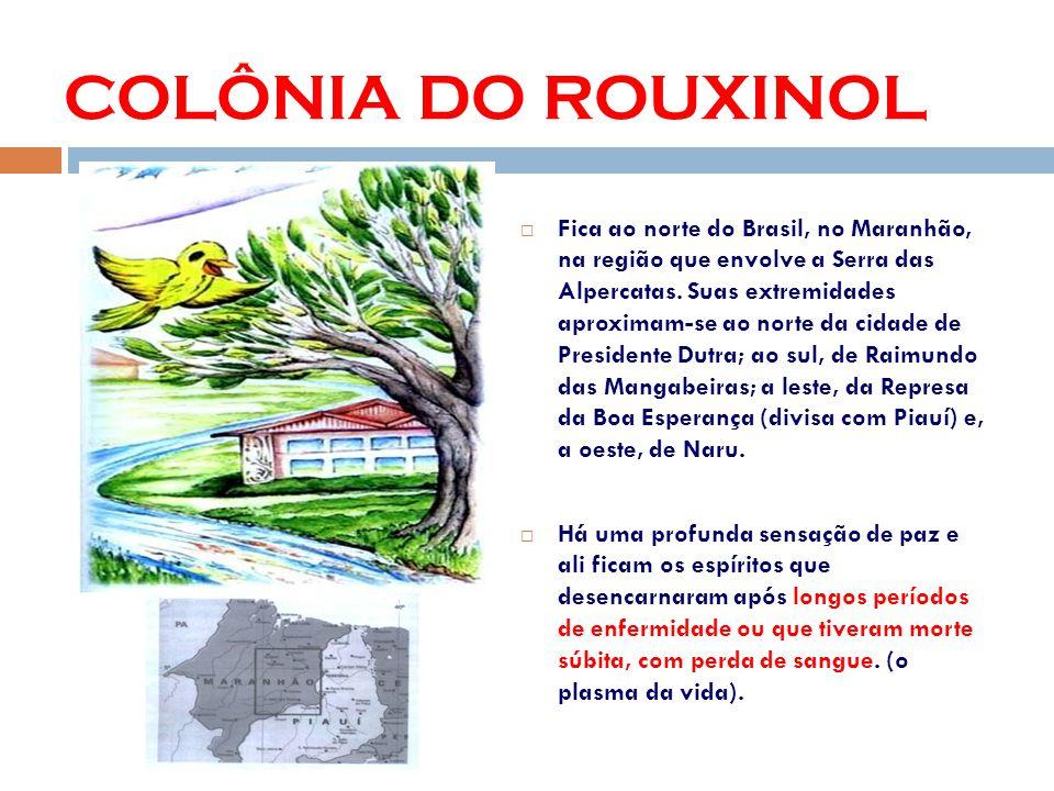 COLÔNIA DO ROUXINOL